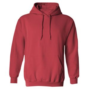 Heavy Blend  Adult Hooded Sweatshirt Thumbnail